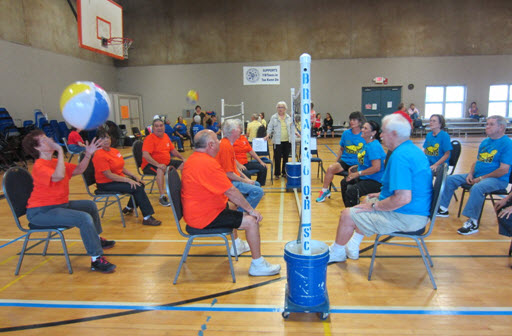 image chair volleyball